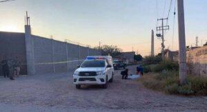 Abuelita muere en Durango tras ser atacada por sus propios perros
