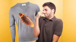 ¿Como quitar el olor a 'cucaracho' de tu ropa guardada? aqui te decimos