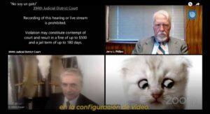 """""""No soy un gato"""", abogado no puede desactivar filtro de Zoom durante juicio en línea VIDEO"""